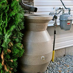 Image Of Rain Barrel