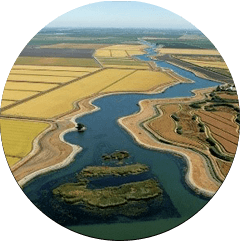 Picture of the Sacramento-San Joaquin River Delta